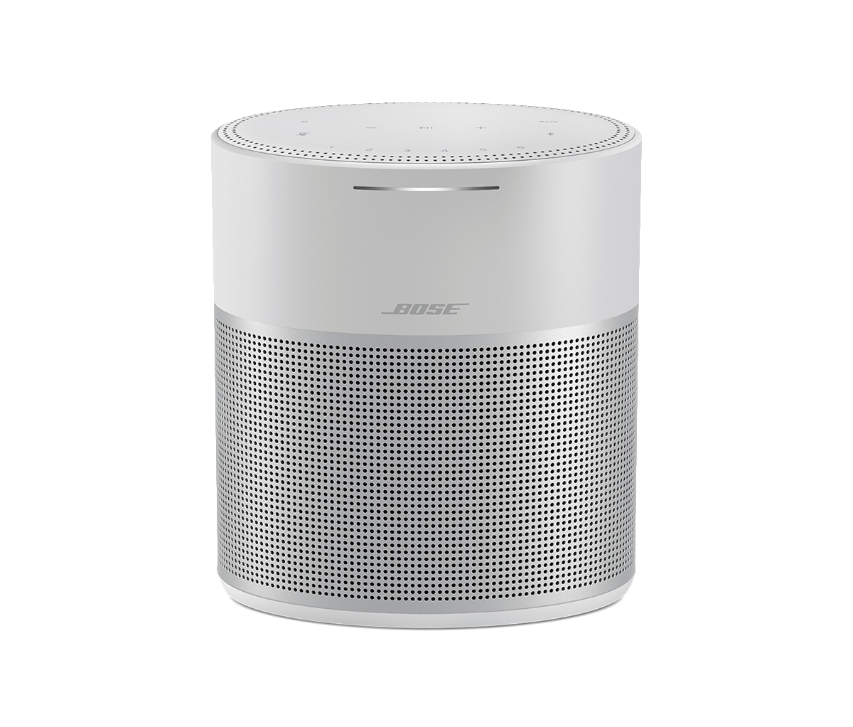 Bose Home Speaker 300 Luxe Silver 808429-1300